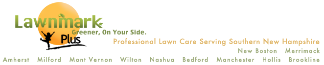 Southern NH Lawn Care Services